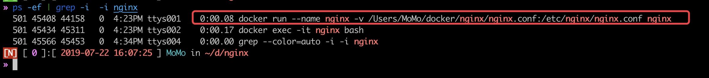 nginx-process-host